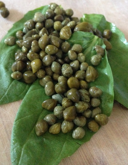 basil capers