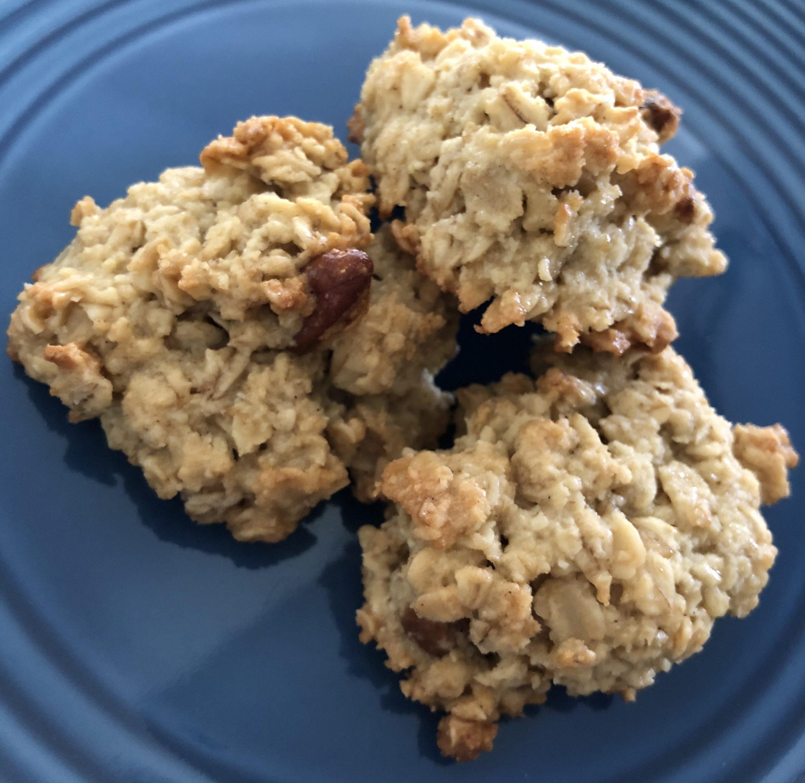 gluten diary sugar free oatmeal cookie